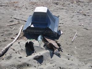Da spiaggia a discarica